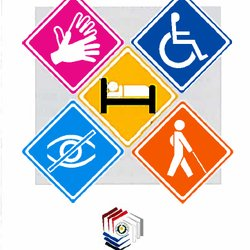 Five icons for disability voter types are shown