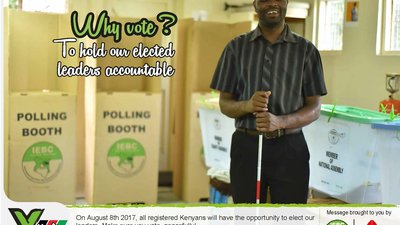 "A man who blind is holding a cane in a polling station. The words ""Why Vote? To hold our elected leaders accountable"" are in the left corner"