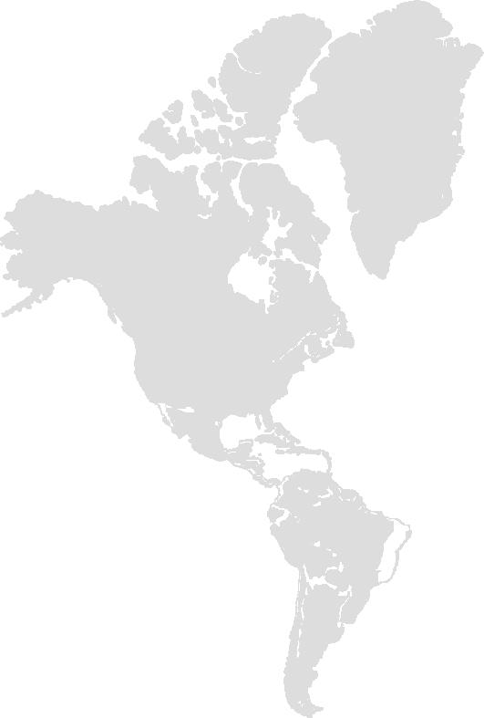 Americas symbolic flag